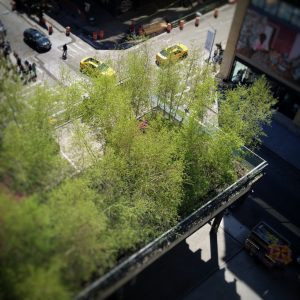 highline-new-york-by-laurent-reich