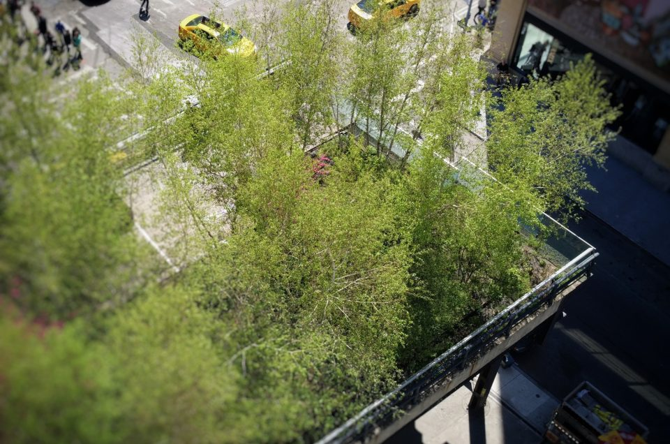 La magie de la HighLine à New York