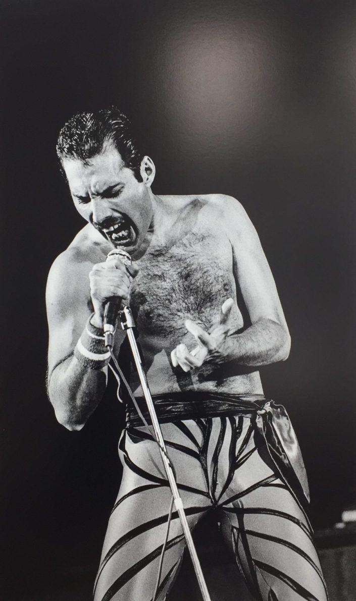 Freddie Mercury - Photo P.Hamon