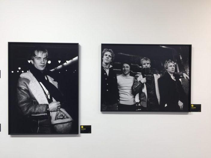 Sting - Photo P.Hamon