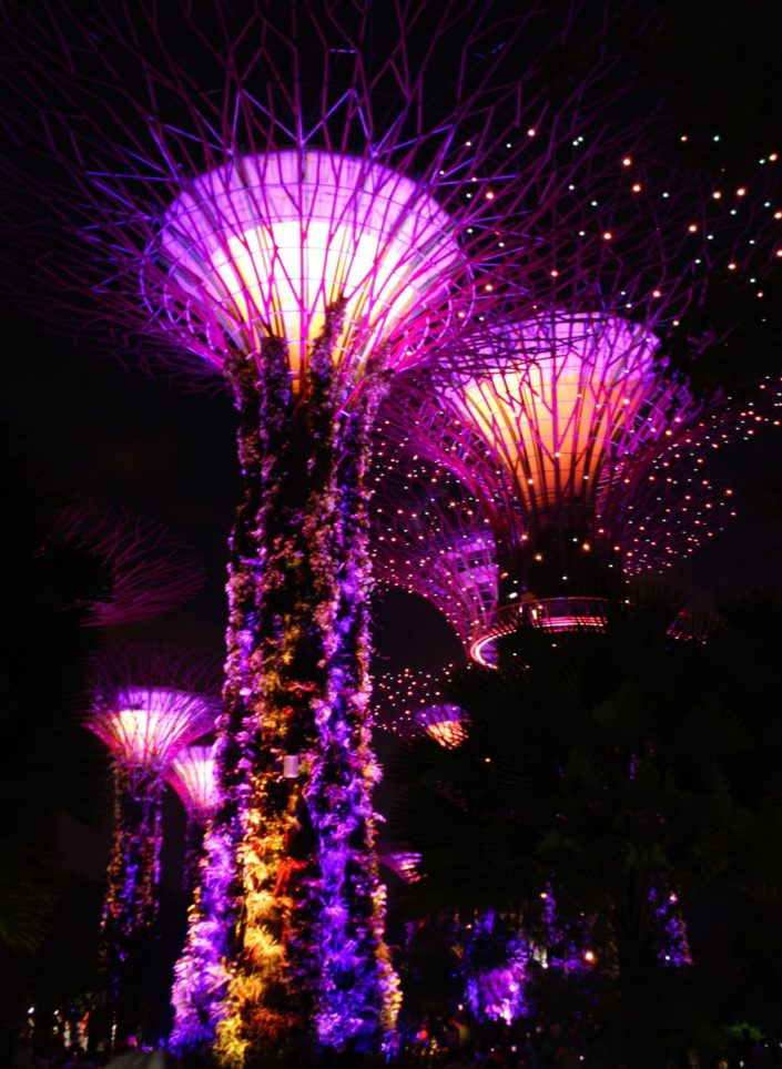 Singapore - Gardens by the Bay - (c) 2018 Laurent Reich