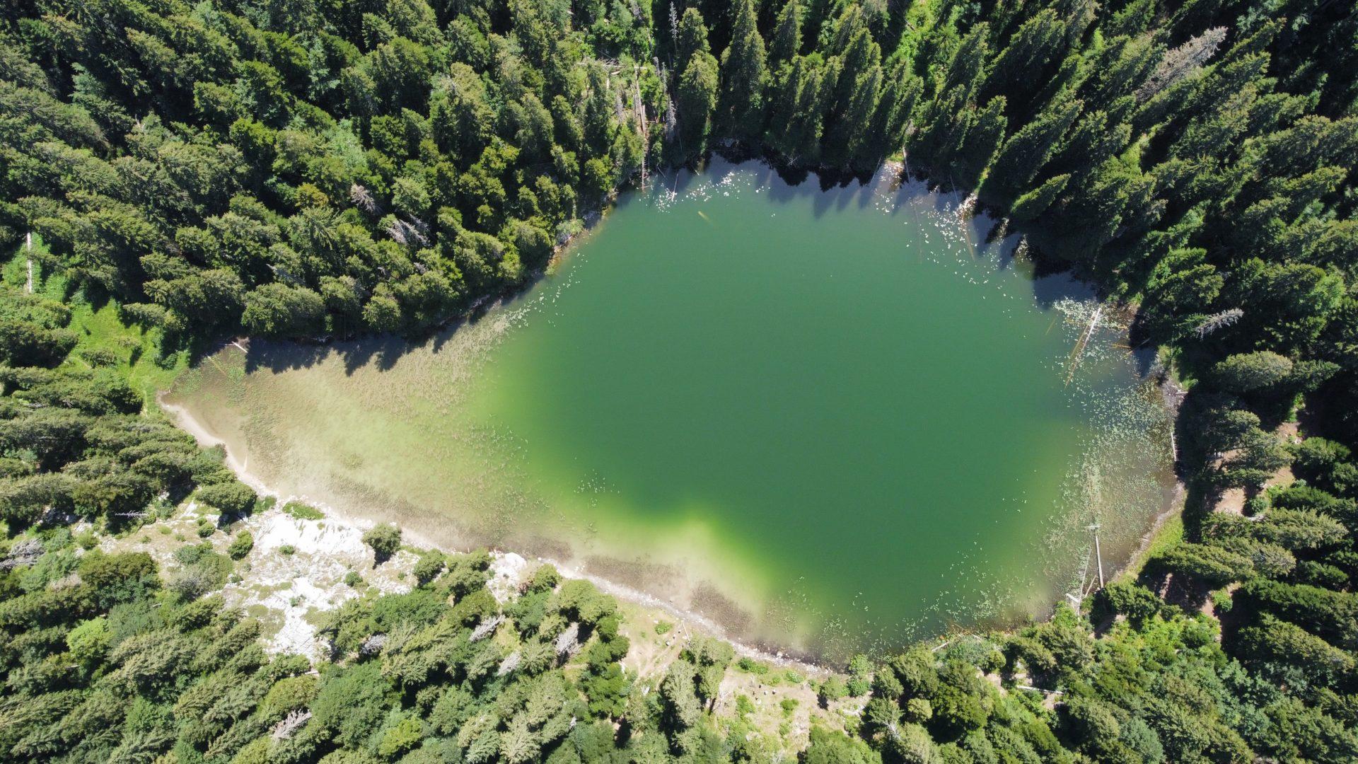 Photo drone Monténégro : Lac de montagne aux couleurs magiques photographié en juillet 2021 avec un Drone DJI Mini2